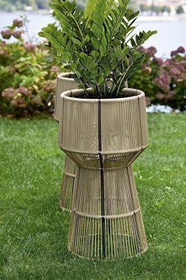 Cricket Flower Pot
