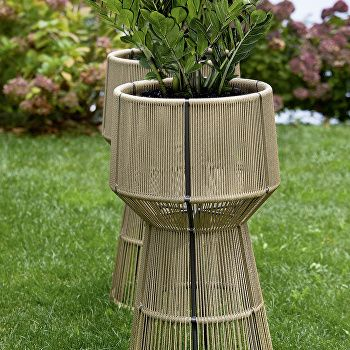 Cricket Flower Pot